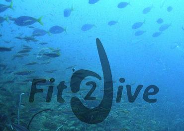 Fit2dive