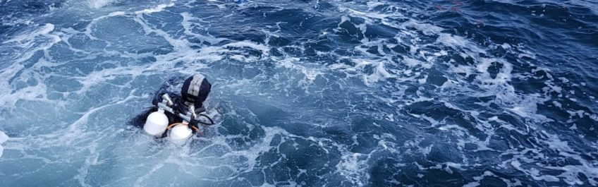 Noordzeeduik